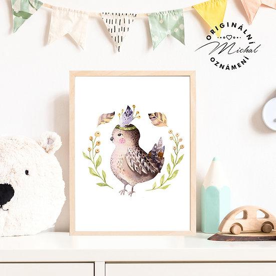 Plakát ptáček ptáčátko Boženka