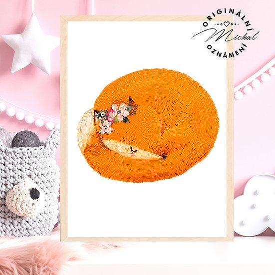 Plakát spinkající mláďátko lišky