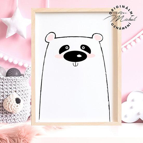 Plakát Medvěd 2