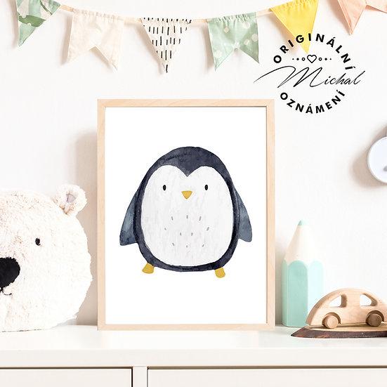 Plakát tučňák