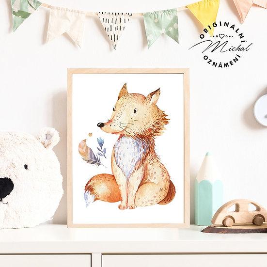 30 - Lišák liška