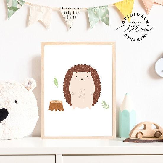 Plakát ježek Bruník