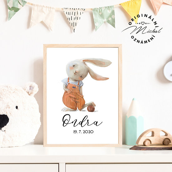Plakát zajíček ušáček se jménem kluci pokojíček