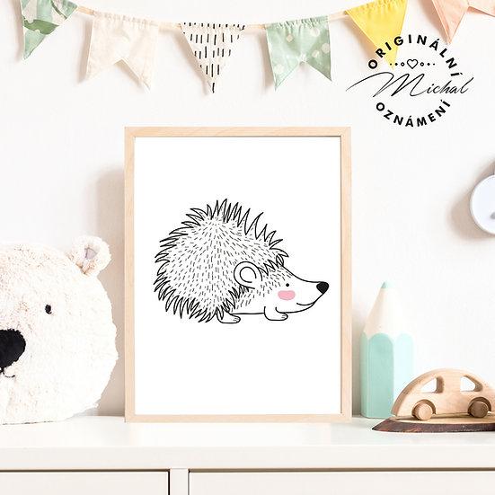 Plakát ježček