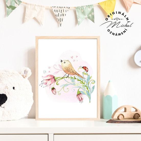57 - Ptáček volá jaro