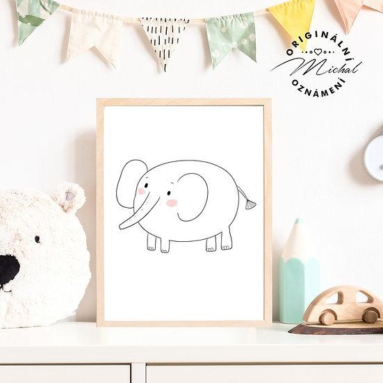 Plakát slon sloník