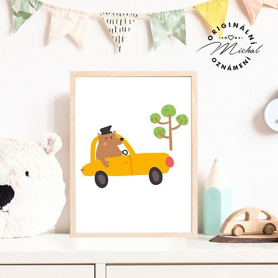 Plakát medvídek autíčko