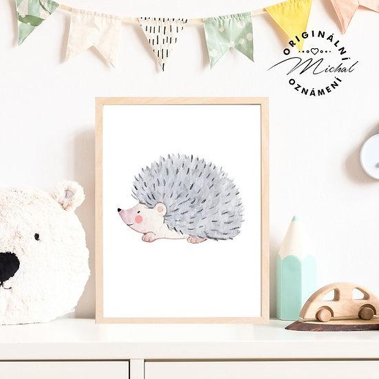 Plakát ježek ježura Karel