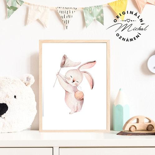 Plakát zajíček roztomilý