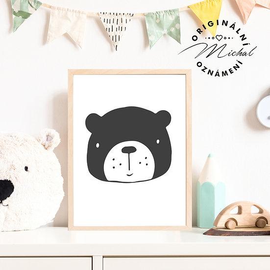 Plakát Medvědí hlavička