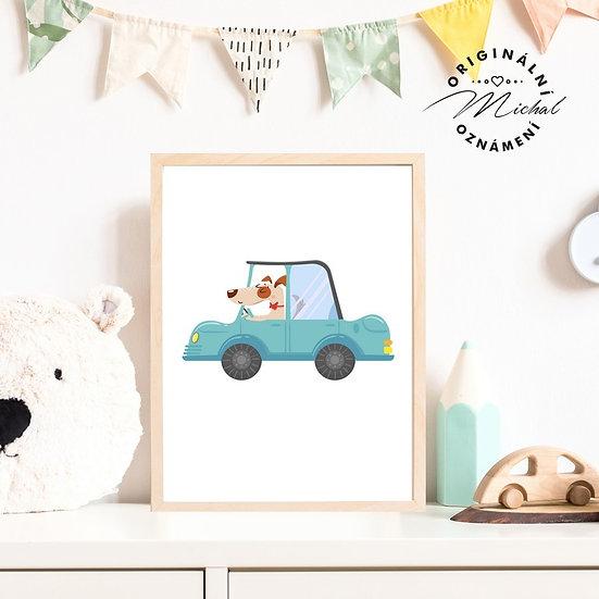 Plakát pejsek auto řidič kluci