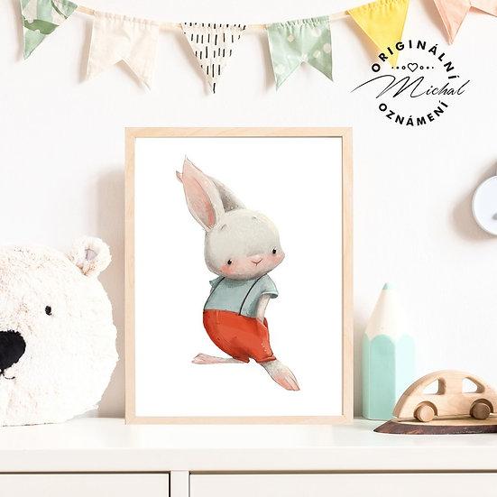 Plakát zajíček frajer zajíc