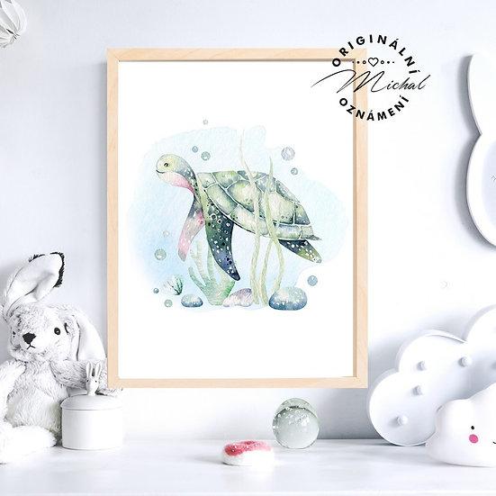 Plakát želva moře