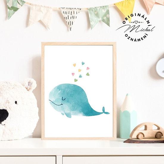 Plakát zamilovaná velryba
