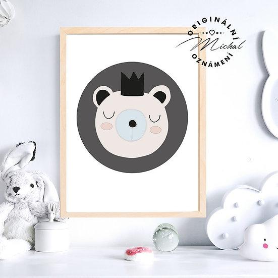 Plakát medvídek princ
