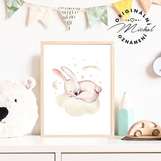 Plakát zajíček spinkání