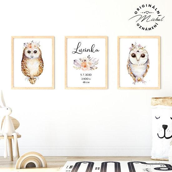 Plakát set sovičky sovy se jménem