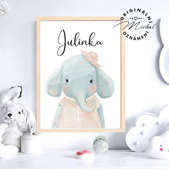 Plakát slonička se jménem slon