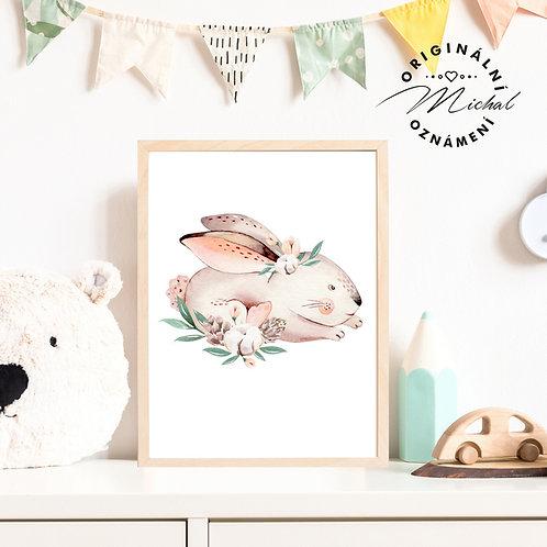 Plakát zajíček v trávě