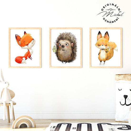 Plakát set zvířátek pro děti ježeček