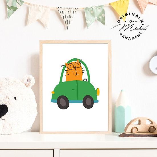 Plakát kocour auto