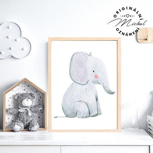 Plakát sloneček