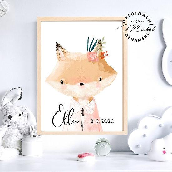 Plakát Liška pro holky se jménem