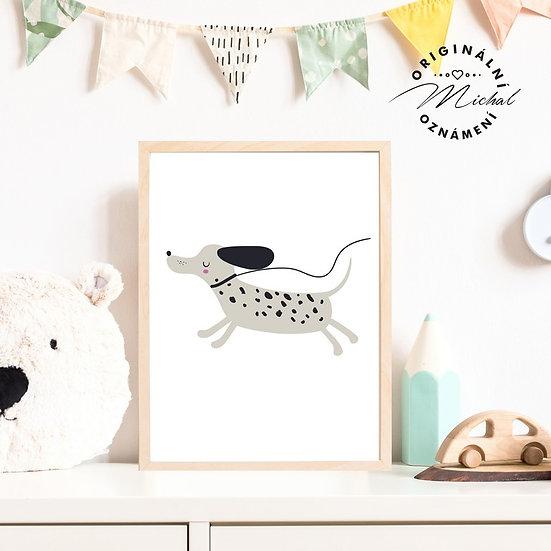 Plakát pejsek dalmatin v běhu