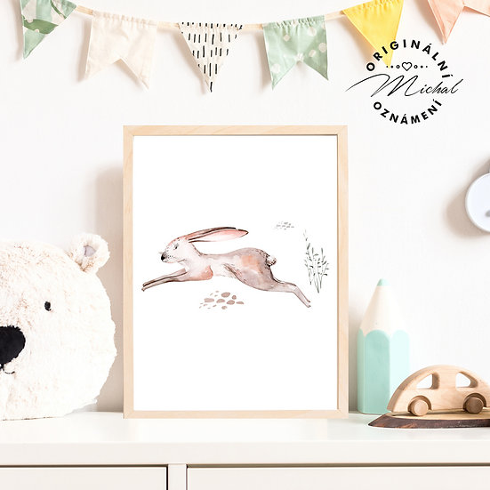Plakát zajíček Dupka