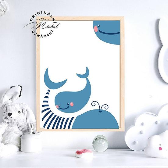 Plakát velryby mořský svět