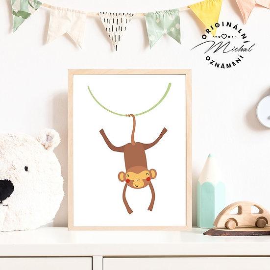 Plakát veselá opička