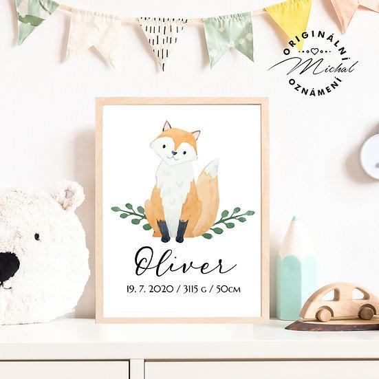 Plakát kluci se jménem lišák liška