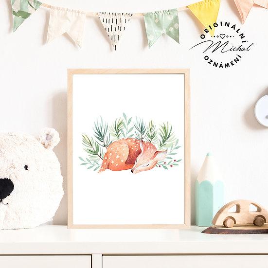 Plakát koloušek spící pro děti