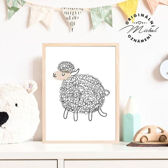 Plakát ovce ovečka Olinka