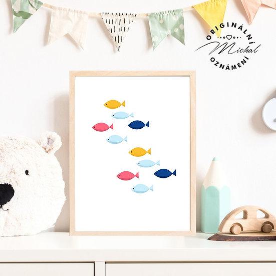 Plakát rybky moře obrázek