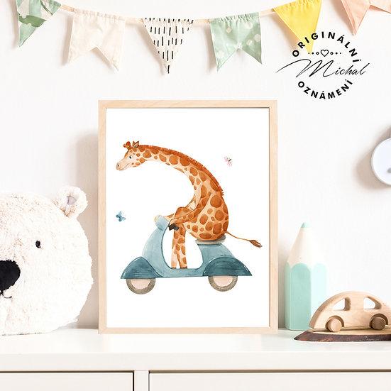 Plakát žirafa na mopedu