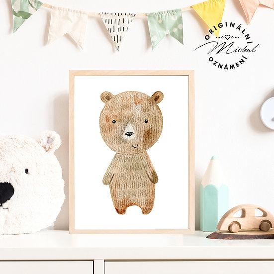 Plakát medvěd Ruda