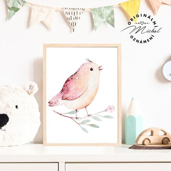 44 - Jarní ptáček