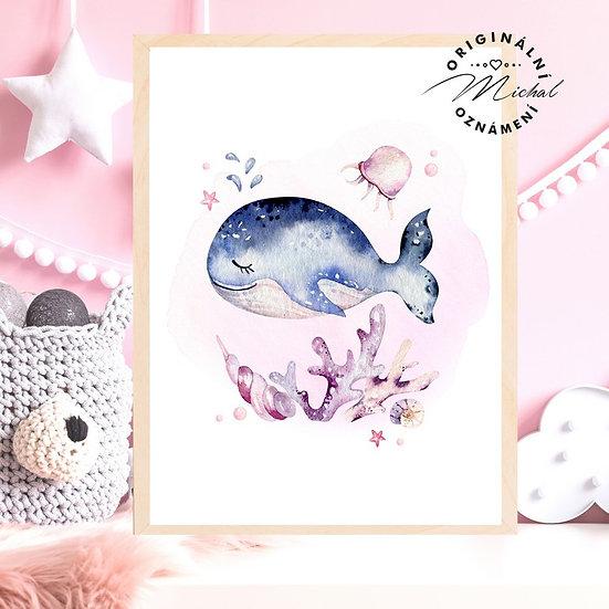 Plakát velryba moře