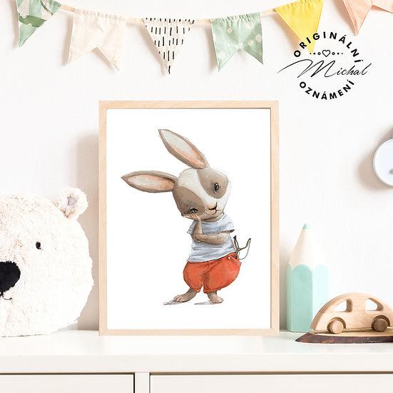 Plakát zajíček pro kluk Práček