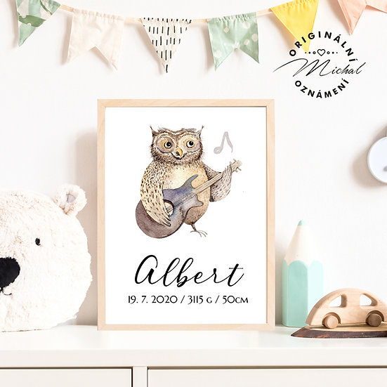 Plakát sova pro děti se jménem kytara