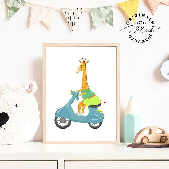 Plakát žirafa na skútru dopravní prostředky