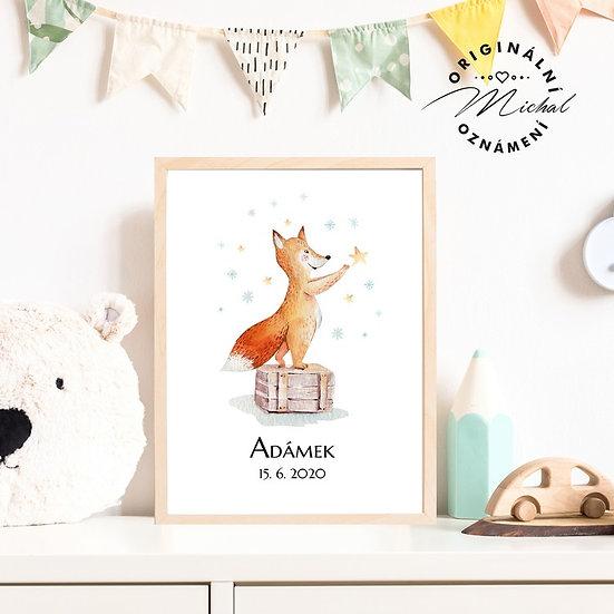 Plakát liška se jménem 50