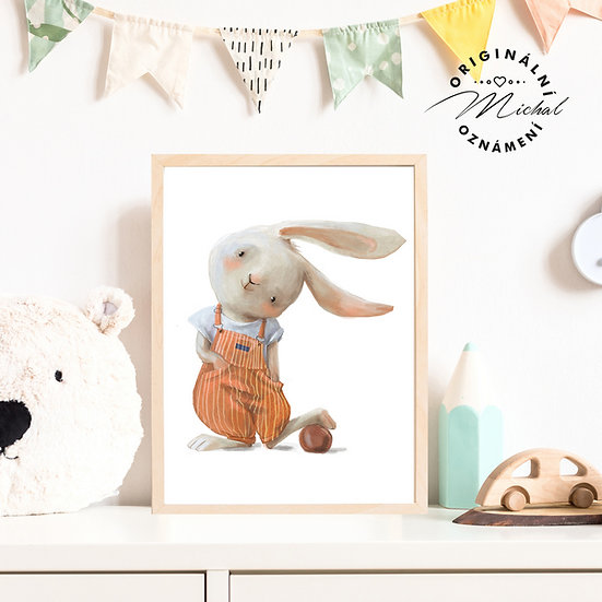 Plakát zajíček ušáček zajda pro kluky