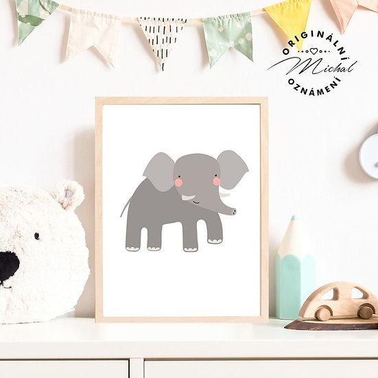 Plakát slon sloneček