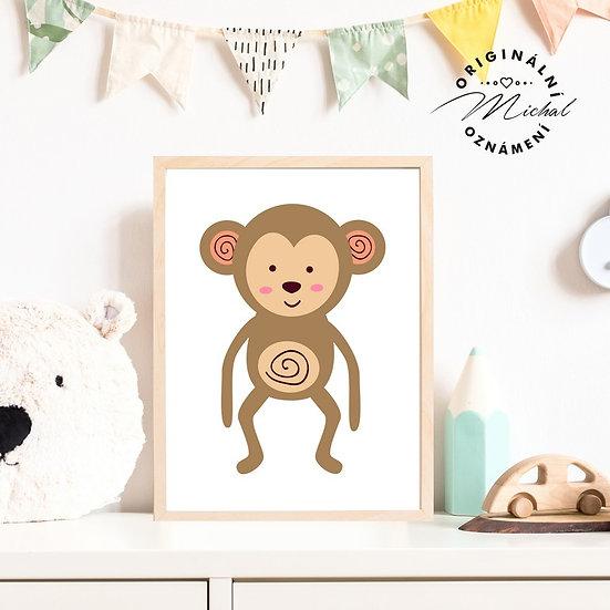Plakát opička Róza