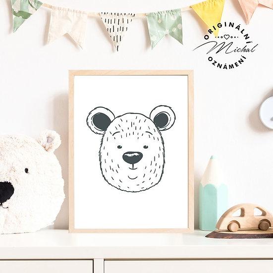 Plakát medvěd lesní Béďa