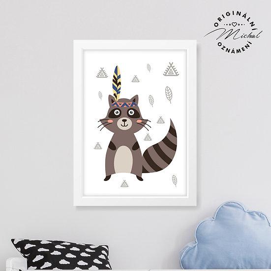 Medvídek mýval – plakát