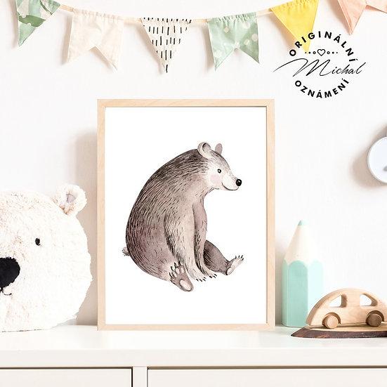 Plakát lesní medvěd medvídek