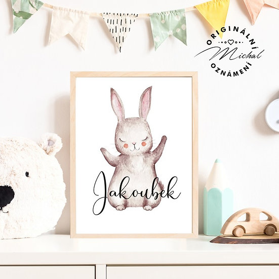 Plakát králíček se jménem dítěte 46